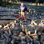 Oak Basin Tree Farm