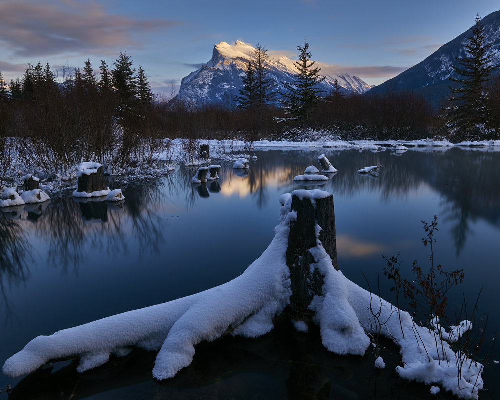 My favourite stop along Vermillion Lakes road. Incredibly I have never once had to share this spot with another photographer!