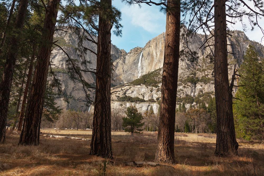 Yosemite_284.jpg