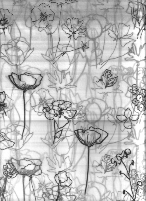 layering flowers. … after finishing a session of inking flowers onto trace, i rolled it up & to my delight found this lovely layering effect. it took a couple attempts to properly record this effect for your viewing (synchronized rolling of the trace paper with the scanner), but here we are. for you! … & hello, sushmita.