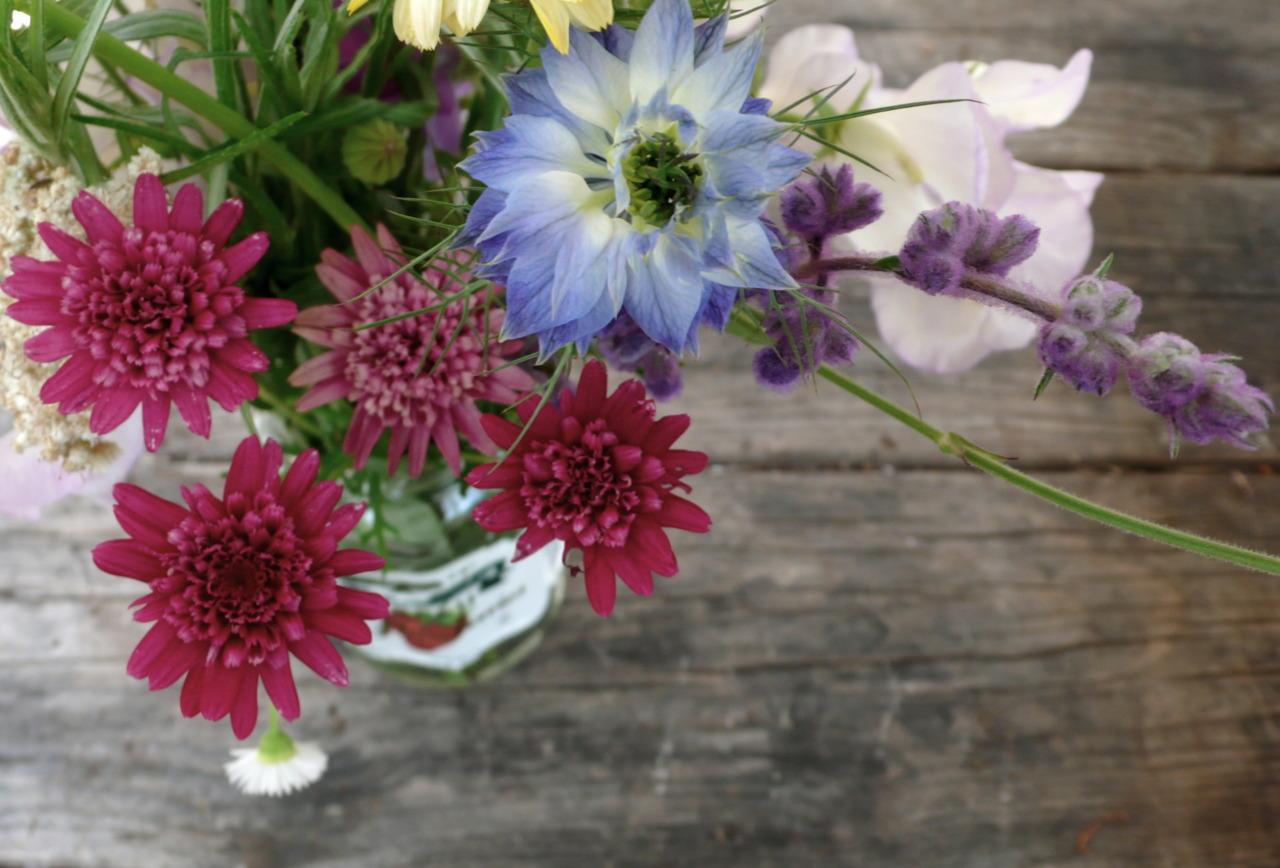 farm flowers.
