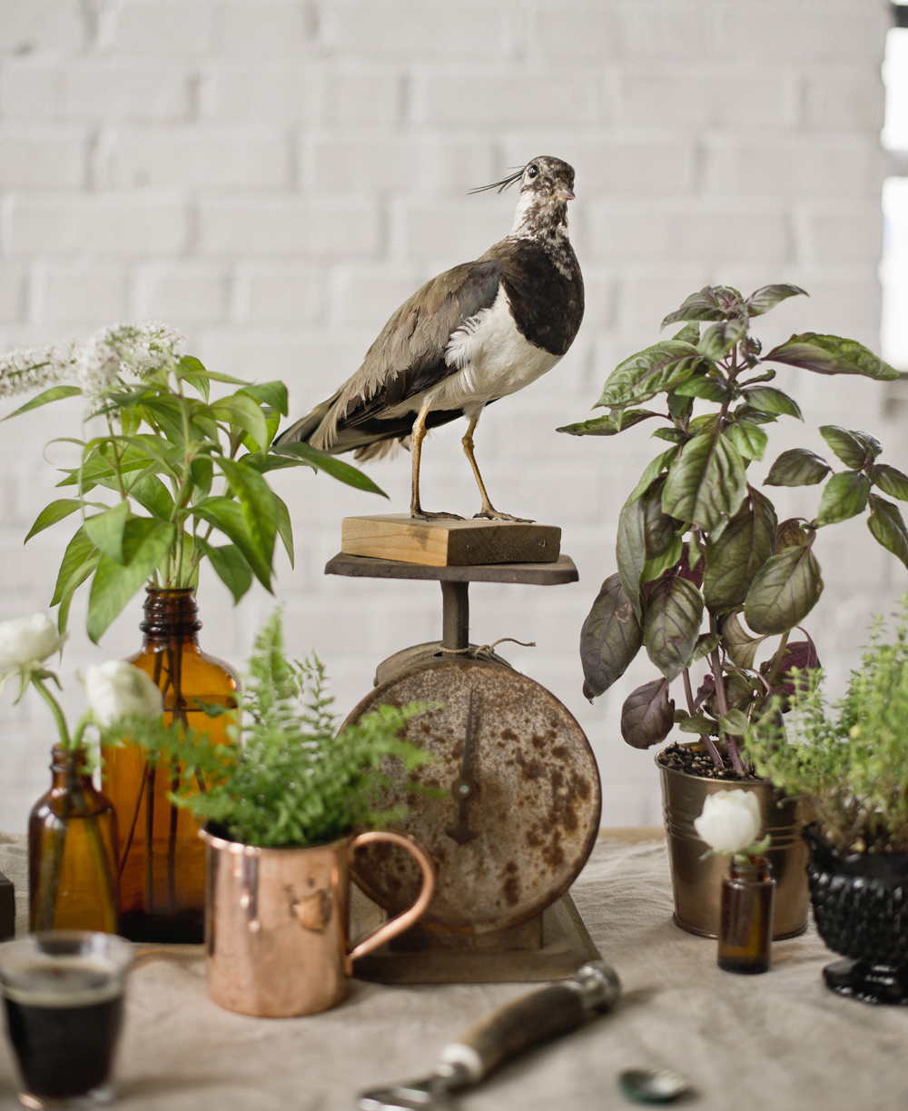 bird tablescape_resize.jpg