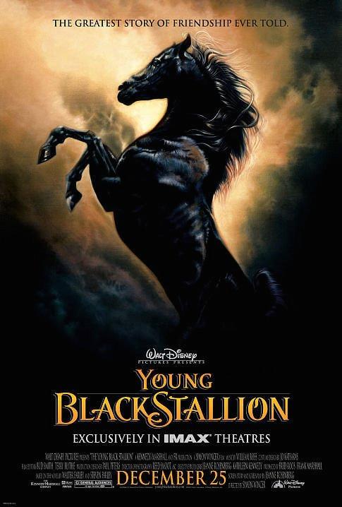 2003-Young Black Stallion.jpg