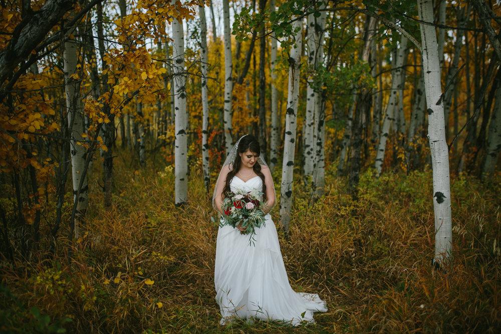 KB Wedding -158 - IMG_4173.jpg