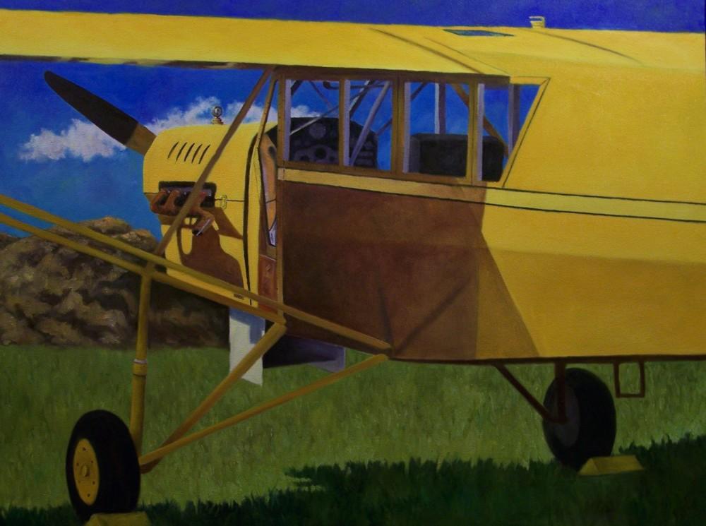 Curtiss Robin
