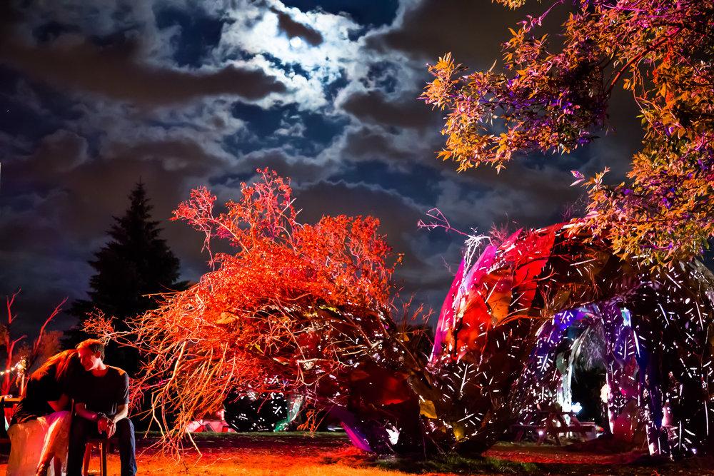 night_moon_Davidjoy_2-2.jpg