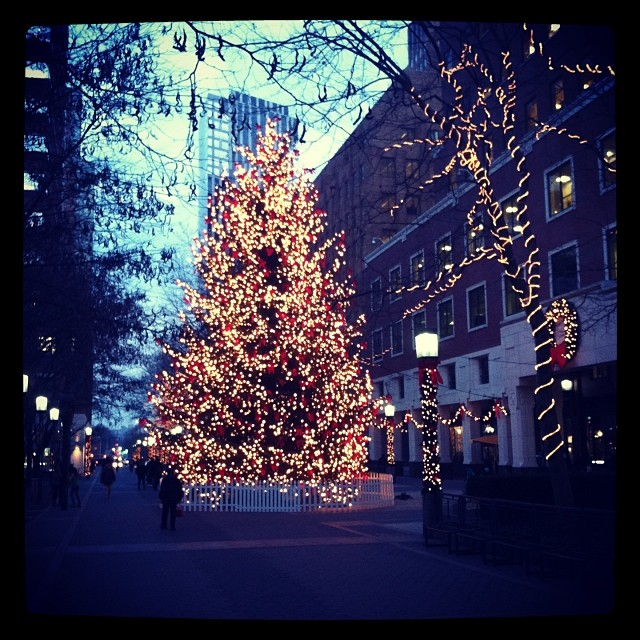 Brooklyn has a tree too! #justsayin #bkone #holiday #bam #metrotech #krampus #dimensionsonstage