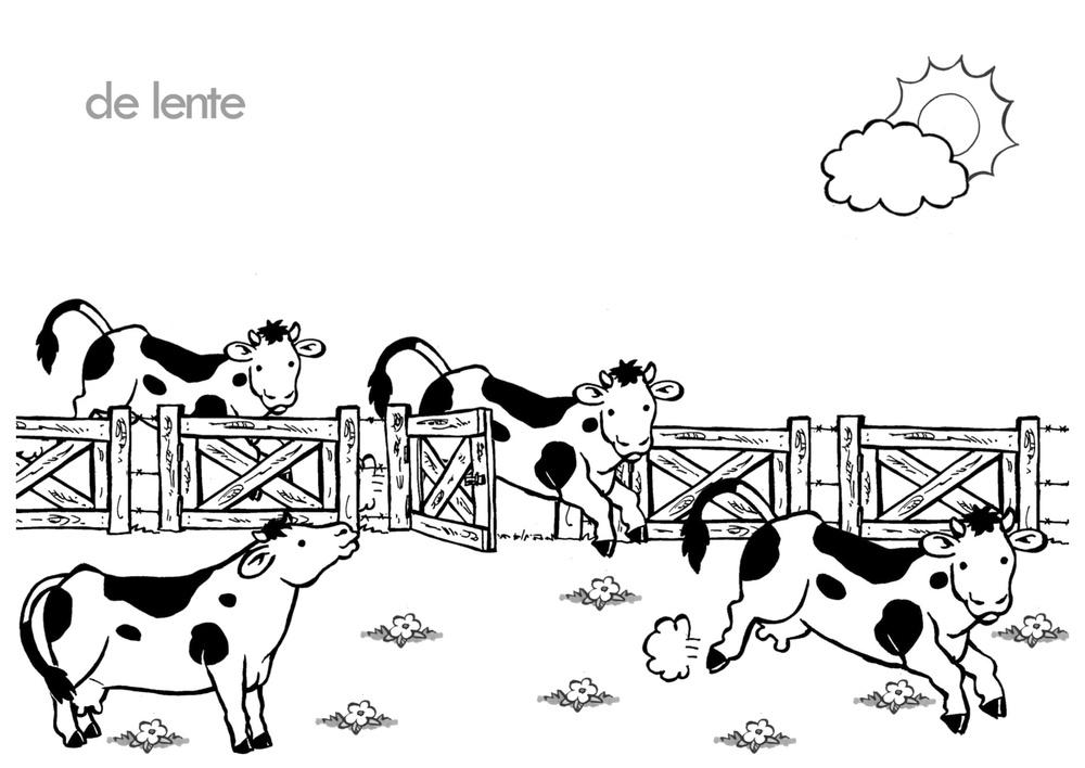 lente koeien in de wei.png.jpg