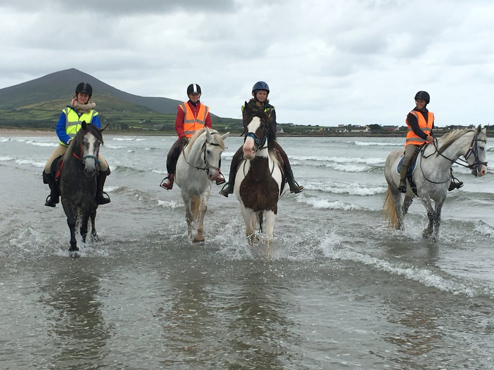 dingle horse riding.jpg