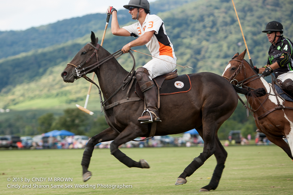 Polo at Virginia Vineyard