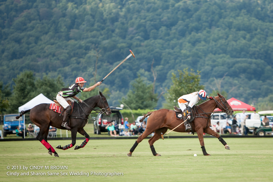 Lesbian wedding photographer documents polo horses