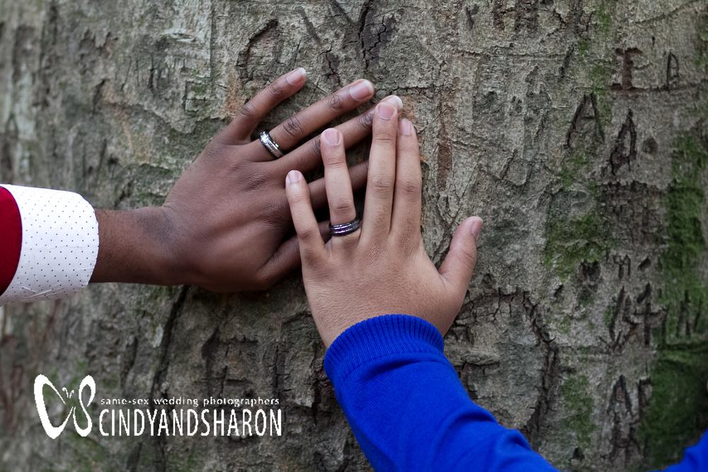 gay-couple-wedding-rings.jpg