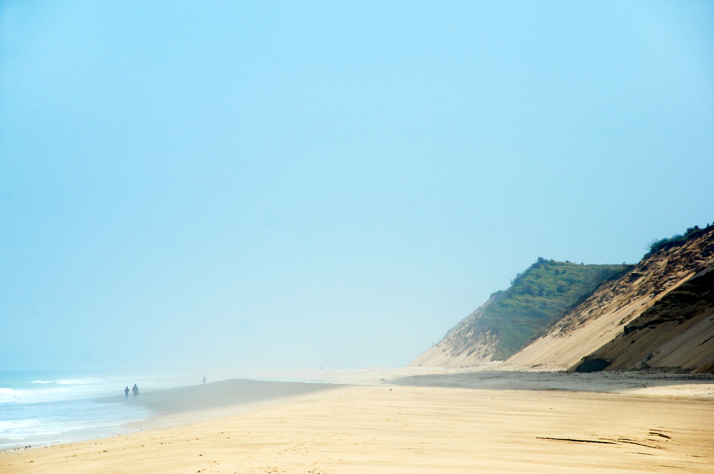 Fog at Newcomb Hollow