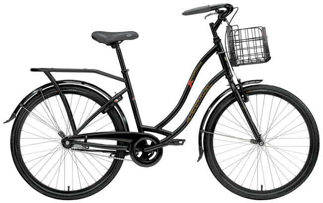 I think I might have found a great bike for my commuter/hauling bike.  The AfricaBike by Kona sells for $450 and for every two that are sold, Kona donates one to Africa.  These bikes go to HIV/AIDS workers in sub-saharan Africa, to travel more easily between patients.  This may be great for me, and for a great cause. Kona Bike Town