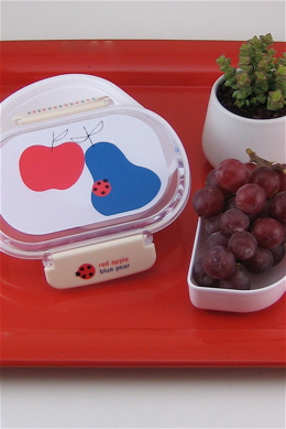 Penelope's has really great housewares and bags by Shinzi Katoh, a Japanese designer. I'd love to have one of these little bento boxes to take my lunch in. $16    Shinzi Katoh  lunch box | Shop Penelope's