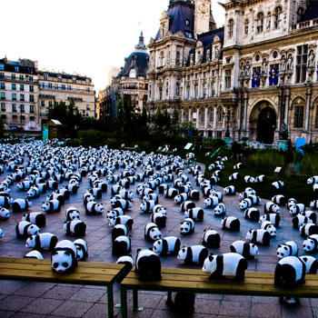 An activist art installation by the WWF results in 1,600 paper mache pandas (one for each living panda left in the workd) traveling to Parisian landmarks.    PANDA PARIS - NYLON MAGAZINE