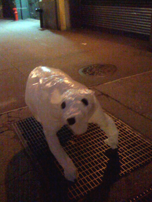 Plastic bag animals tied to subway grates inflate when filled with warm air from passing train.    Wooster Collective: Street Art At Its Best #3: Plastic Bag Animals