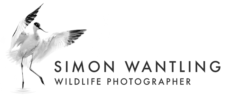 Simon Wantling Wildlife Photographer