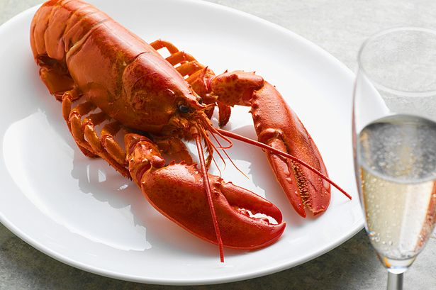 Main-Lobster-and-Champagne.jpg