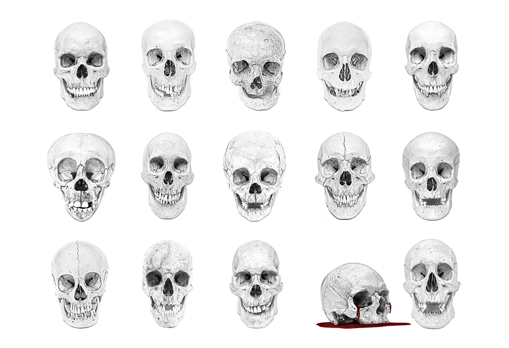 All_Skulls_Horizontal_Final_3_With Blood.jpg
