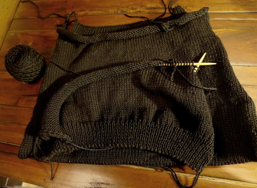 WIP: Marty's Worsted weight vest in Cascade 220 - Black