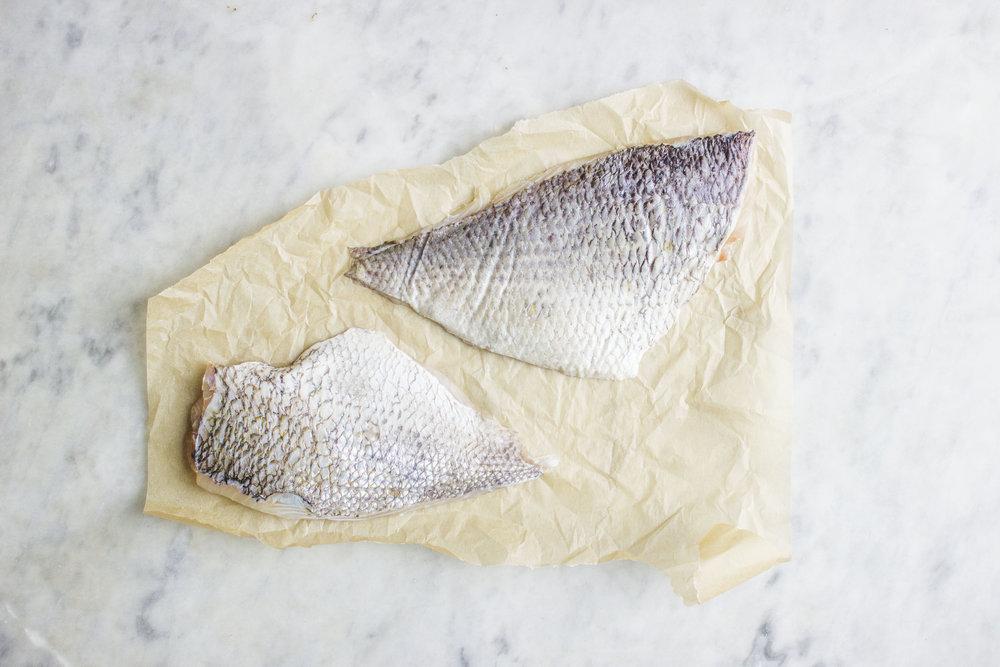 fish raw.jpg