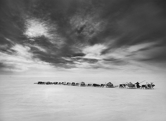 Sebastiao-Salgado_Genesis_These-caravans-of-sledges-003.jpg