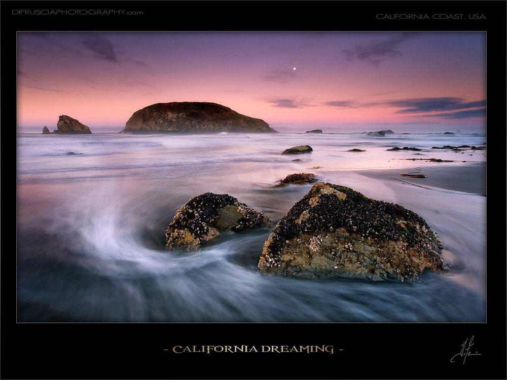 california-dreaming_patrick-di-fruscia.jpg