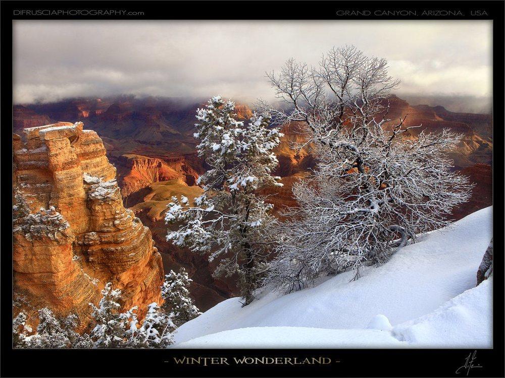 winter-wonderland_patrick-di-fruscia.jpg