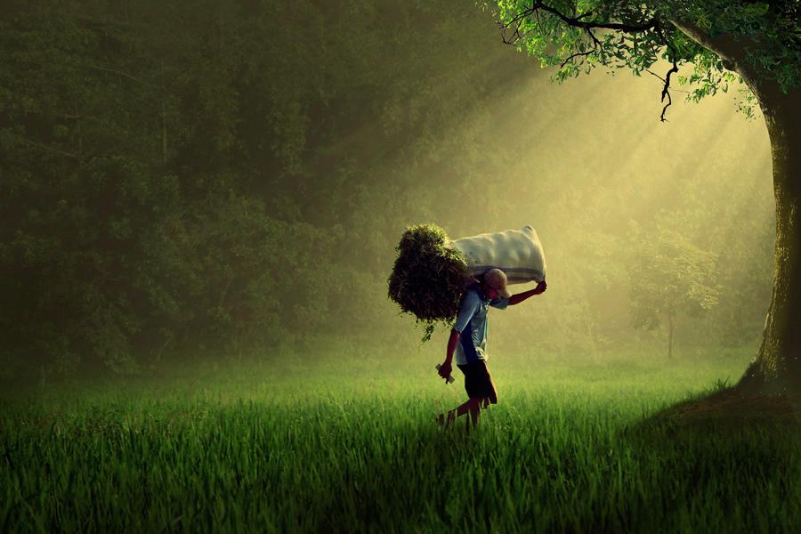 sang-pencari-rumput.jpg