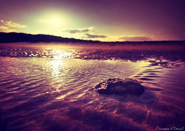 christopher-odonnell_summer_solstice.jpg