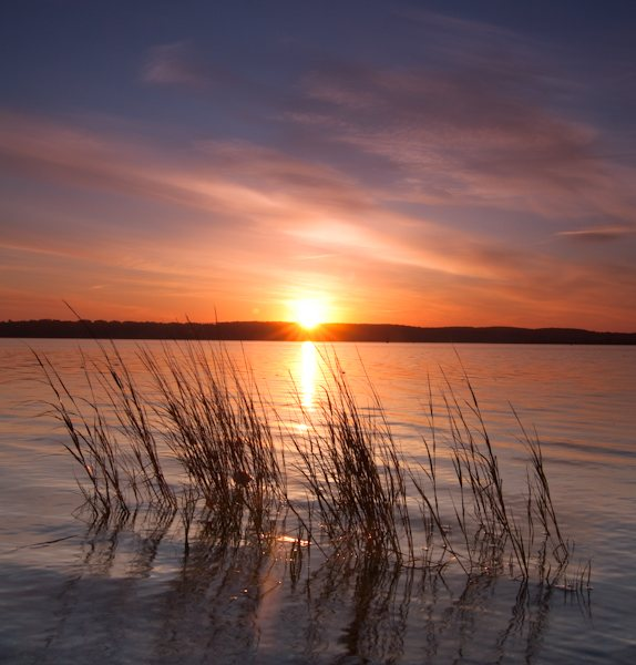 ed-king_sea-grass-sunrise.jpg