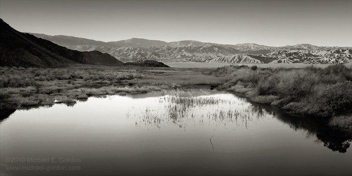 michael-e-gordon_desert-oasis.jpg