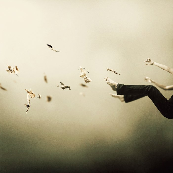 martin-stranka_i-was-falling-high.jpg