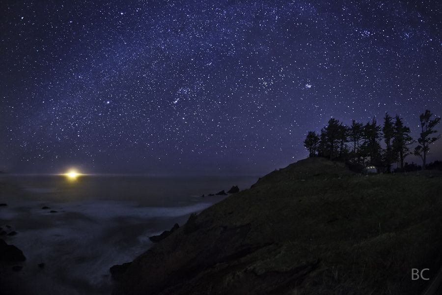 ben-canales_coastal-stars.jpg