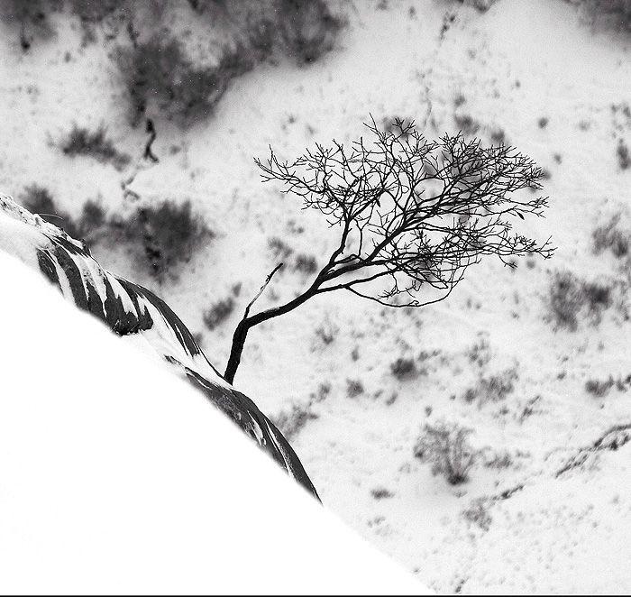 alexandre-deschaumes-4.jpg