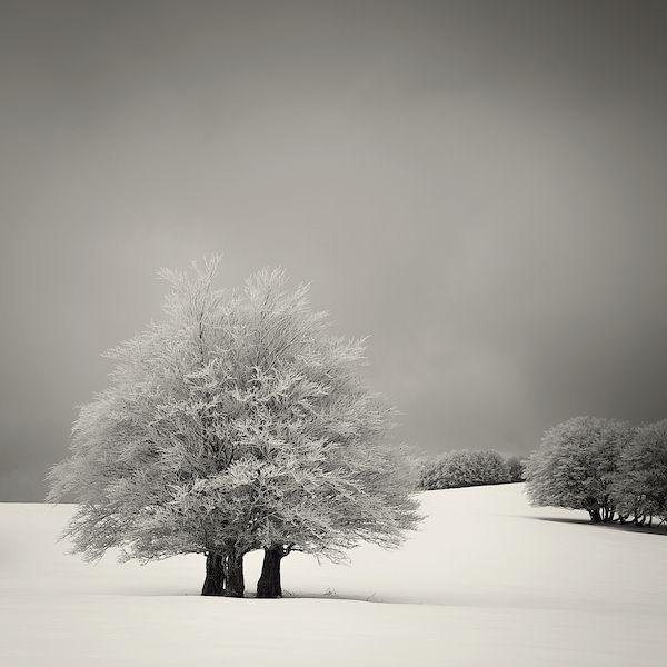 lionel-orriols_snowscapes-16.jpg