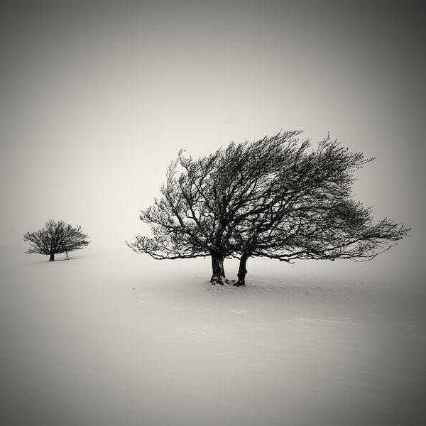 lionel-orriols_snowscapes-21.jpg