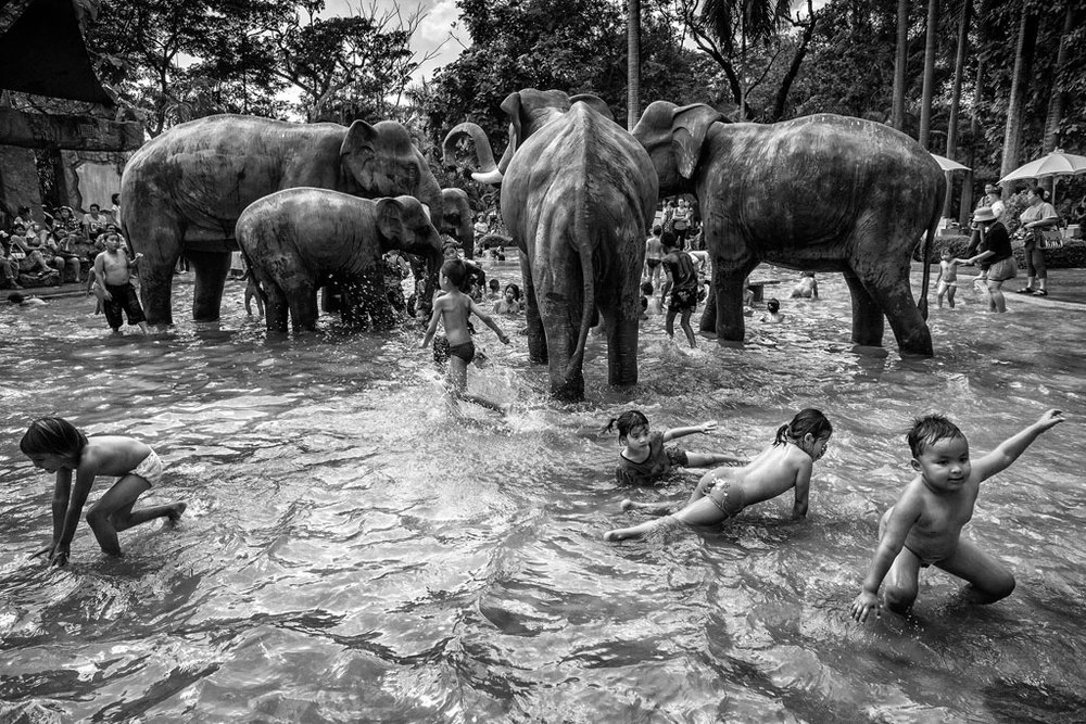 © Suthas Rungsirisilp, Thailand, 1st place, Thailand National Award, 2014 Sony World Photography Awards
