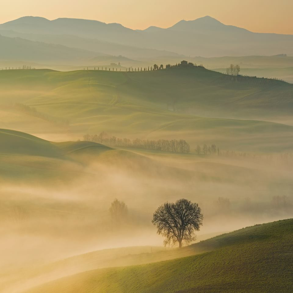 Morning -  Pawel Kucharski.jpg
