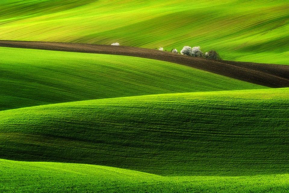 Spring -  Pawel Kucharski.jpg