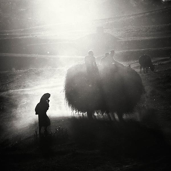bogdan-panait-24.jpg