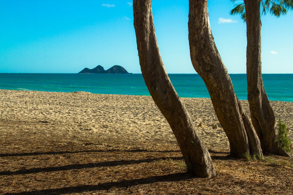 Hawaii2015-14.jpg