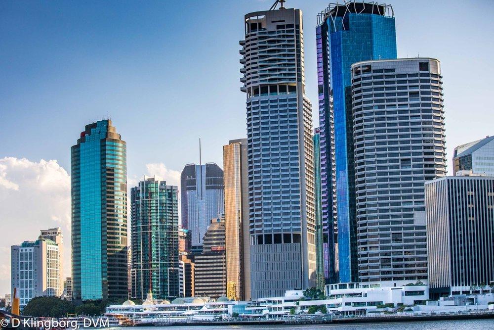 The Brisbane Harbor