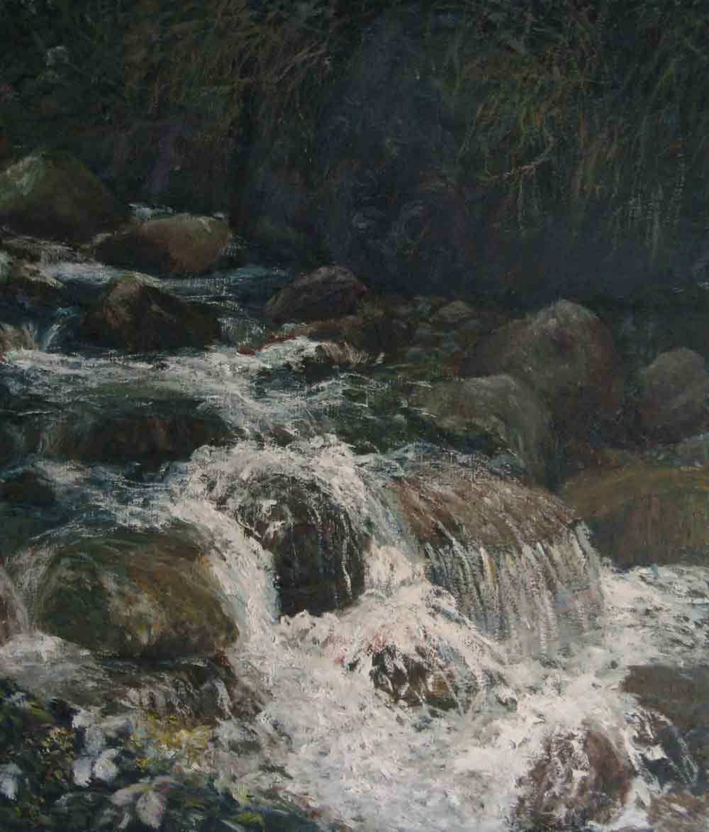 Wild Stream 荒溪<br>林彥甫