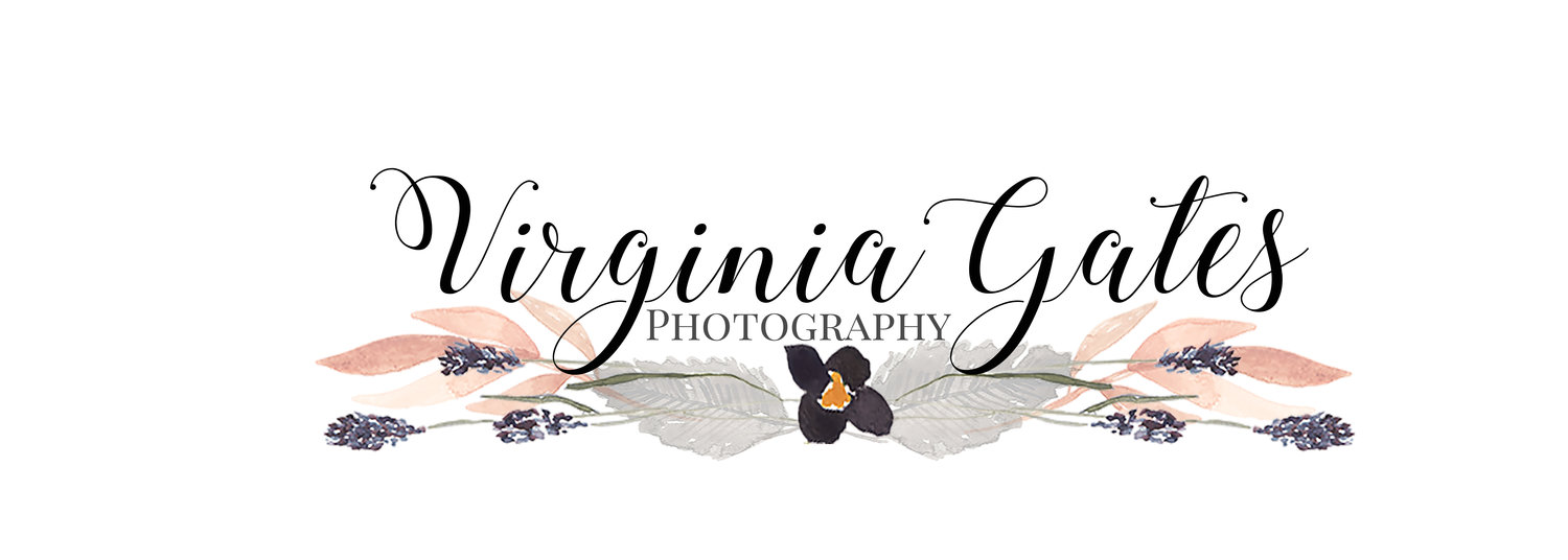 Virginia Gates Photography | Wilmington, NC Photographer | 910-233-8227 | gatesve@gmail.com