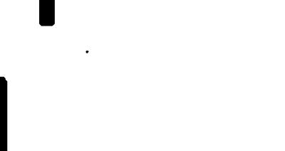 Coje-Logo-white.png