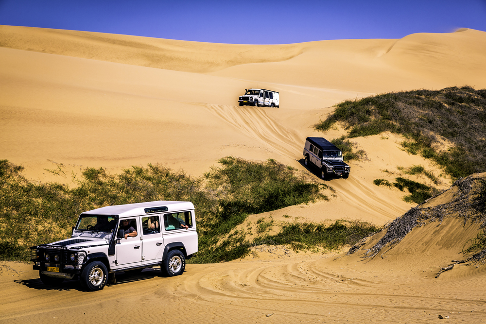 Convoy Through The Dunes