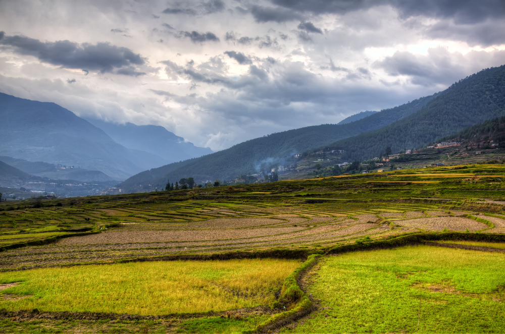 The Rice Terraces Of Teoprongchu