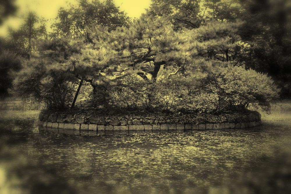 Entering The Island Garden
